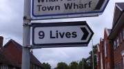 funny-signs-9-lives
